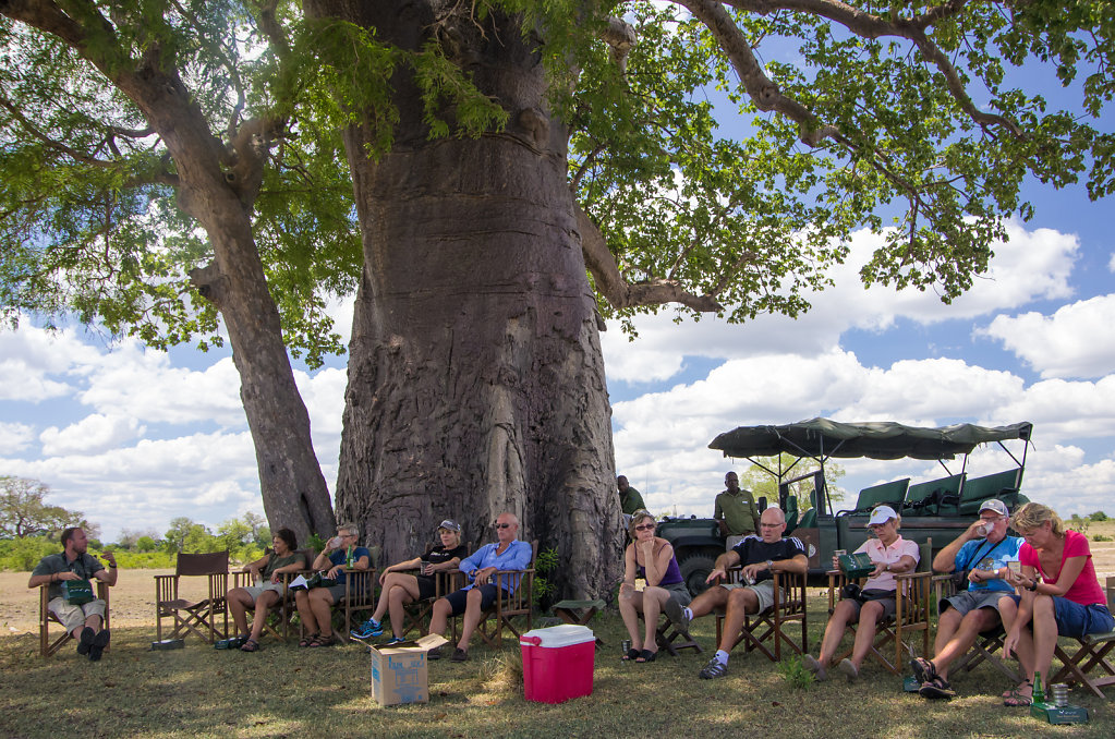 Lunch under the great Baobab tree