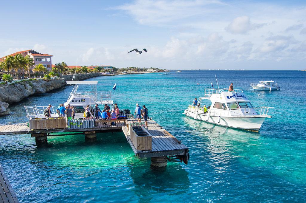 2016-Bonaire-1.jpg